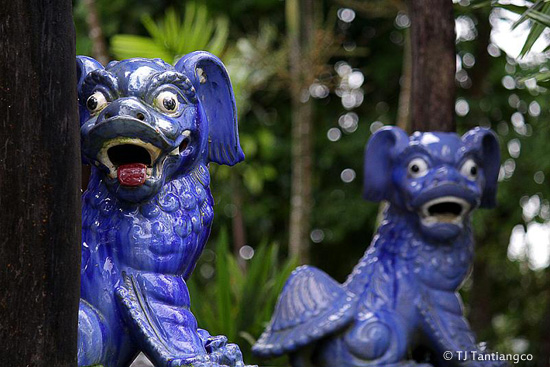 Sundang Island, temple dogs