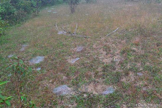 Marlboro Country path